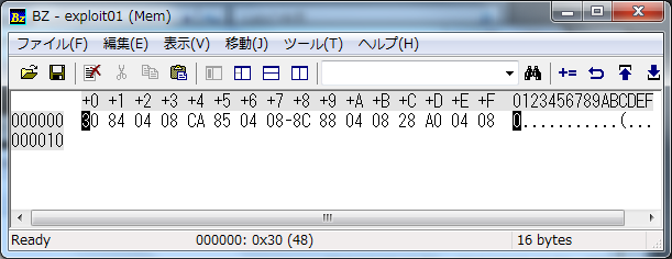 Bz Exploit1